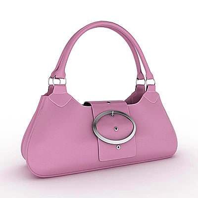 Handbags Ladies Purse Shopping