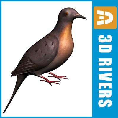 pigeon_logo.jpg