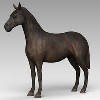 horse friesian 3d max