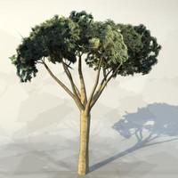 Tree_044.zip