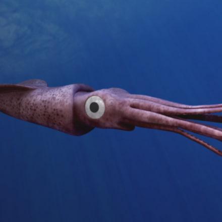 squidclosets.jpg