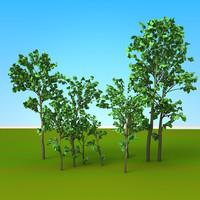 3d model of trees