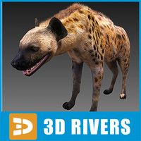 Hyena by 3DRivers