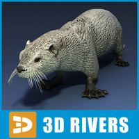sea otter 3d obj