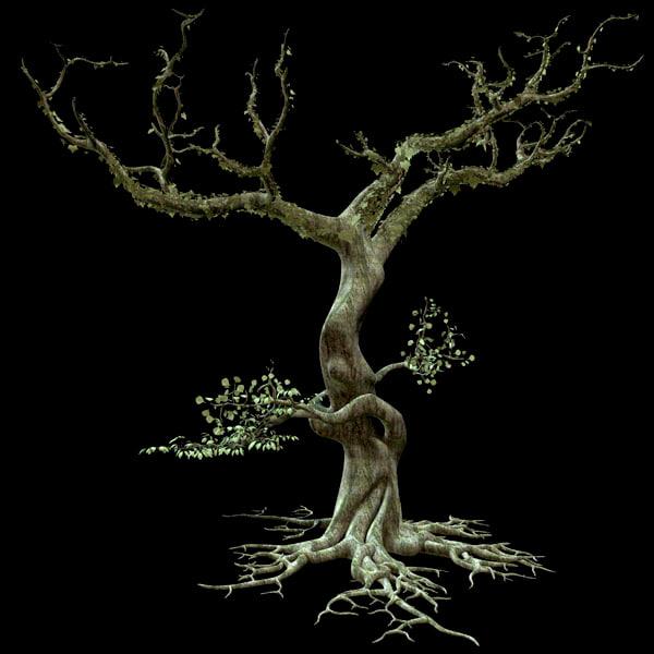 albero01.jpg