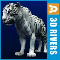 white tiger max