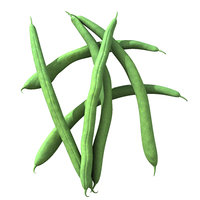 max beans