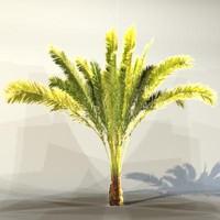 3d pc palm