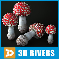 Fly Agaric by 3DRivers