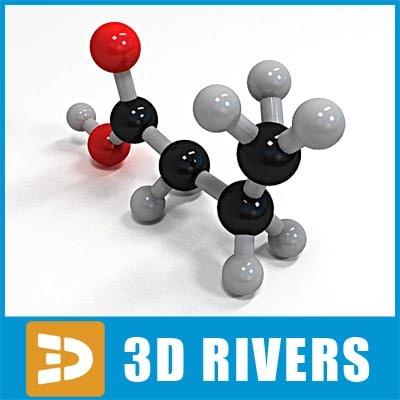 3d butanoic acid