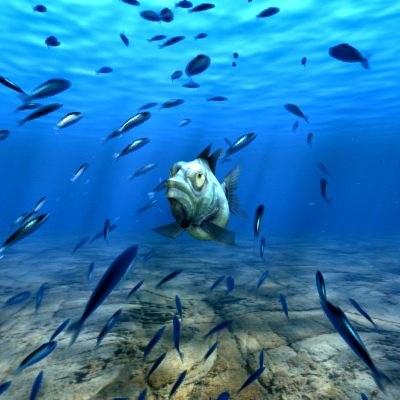Underwater_Fishes_Animation_Thumbnail_01.jpg