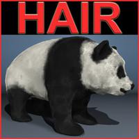 PANDA.rar