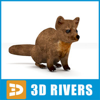 3d model marten animals agile
