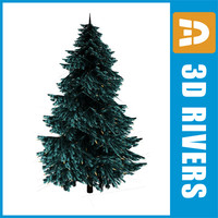 Blue Spruce by 3DRivers