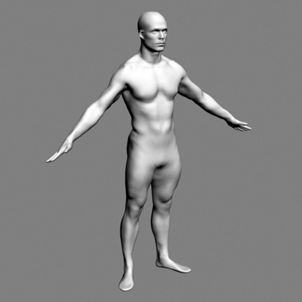 NURBS Model from Scan of Man