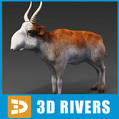 Saiga-Antelope_logo.jpg