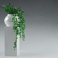plant_05