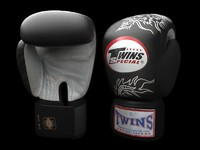 boxing gloves -twins