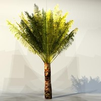 3dsmax pc palm