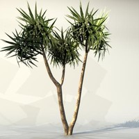 pc palm max