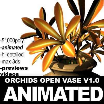 Orchids Open Vase