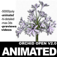 realistic flower animation open 3d 3ds