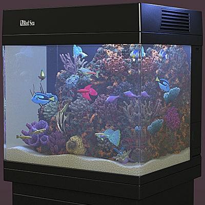 aquarium red sea 130d 3d max. Black Bedroom Furniture Sets. Home Design Ideas