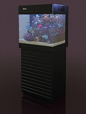 Aquarium_Red_Sea_MAX_130D_04.png