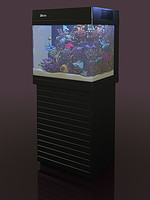 aquarium red sea 130d 3d max
