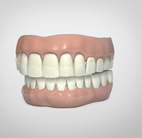 dentures.max