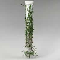 plant & column_03