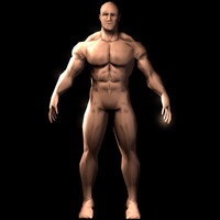 muscular wings character 3d model