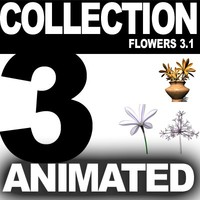 COLLECTION FLOWERS ANIMATED3.1