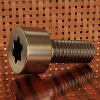 6x15 TORX screw.max