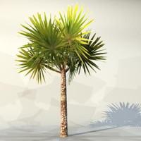 3d pc palm model