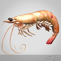 shrimp 3ds