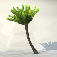 max pc palm