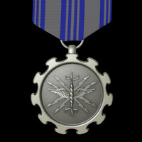 air force achievement medal 3d obj