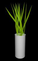 modern vase plant 3d 3ds