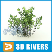 3d model bushes island plants