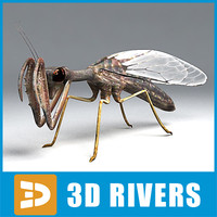 Mantispid by 3DRivers