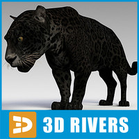 panther cats 3d model