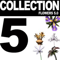 COLLECTION FLOWERS 5.0