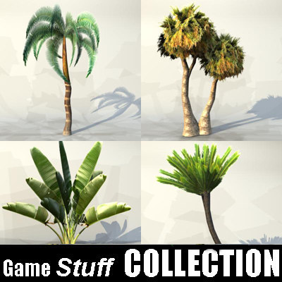 Collection_palm_01.jpg