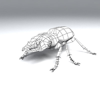 3d ground beetle insect - Ground beetle by 3DRivers... by 3DRivers