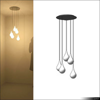 Lamp Ceiling Suspended 00771se