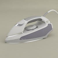 max steam iron