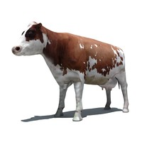 3D_cow_default.zip