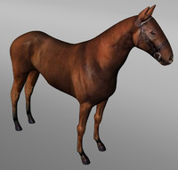 3ds horse