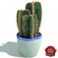 3ds max cactus cereus peruvianus v2